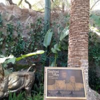 Siegfried and Roy's Secret Garden & Dolphin Habitat