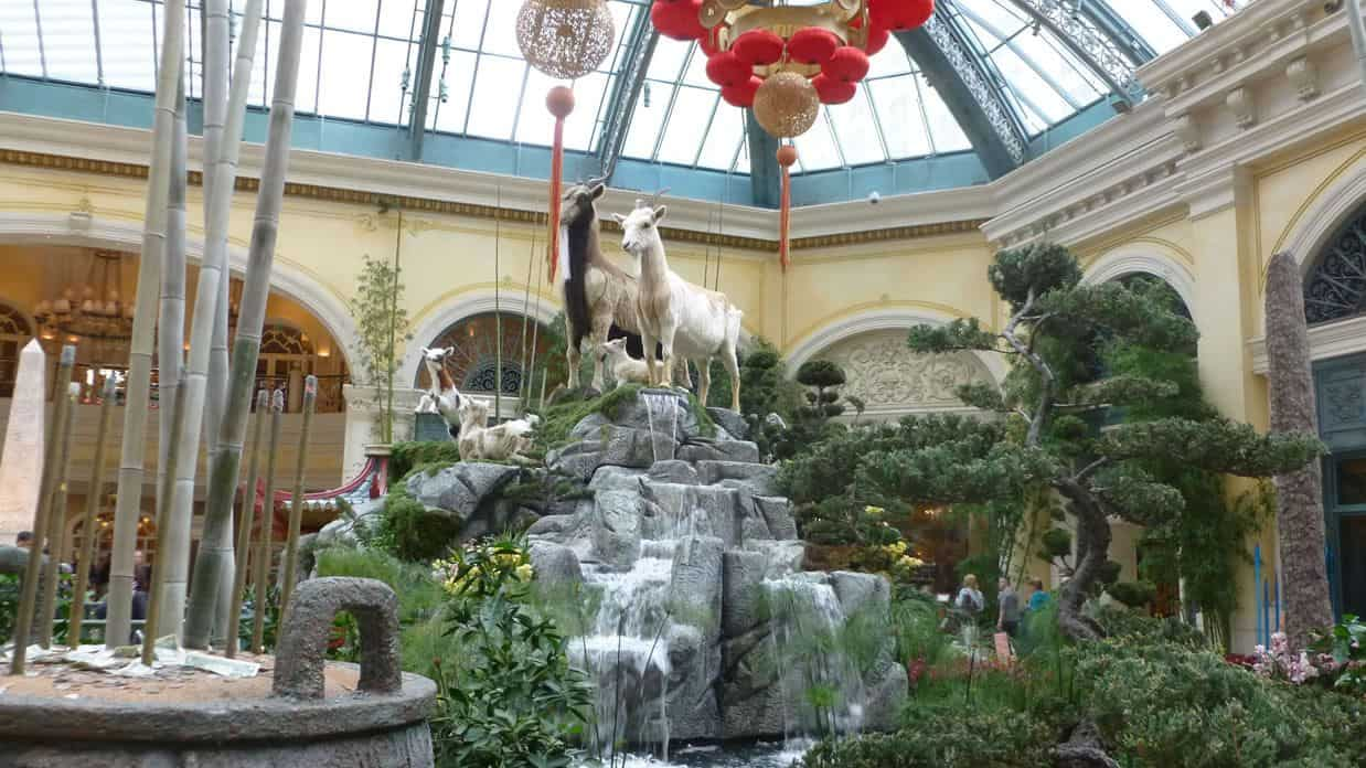 Bellagio Conservatory And Botanical Gardens Videos And Photo Gallery